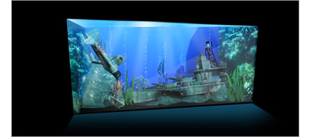 Original Truk Lagoon aquarium concept designed by Reefscape Australia